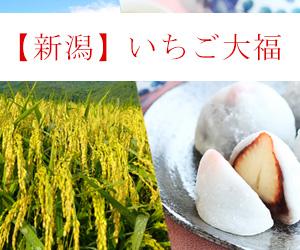 【新潟限定】米どころならではの絶品いちご大福7選